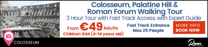 Walking Tour Covering The Colosseum, Palatine Hill & Roman Forum