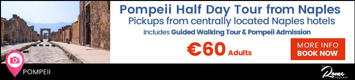 Half Day Tour From Naples  To Pompeii